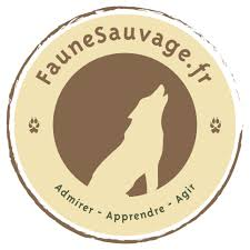 faunesauvage.fr ; Sauvage Max de nature