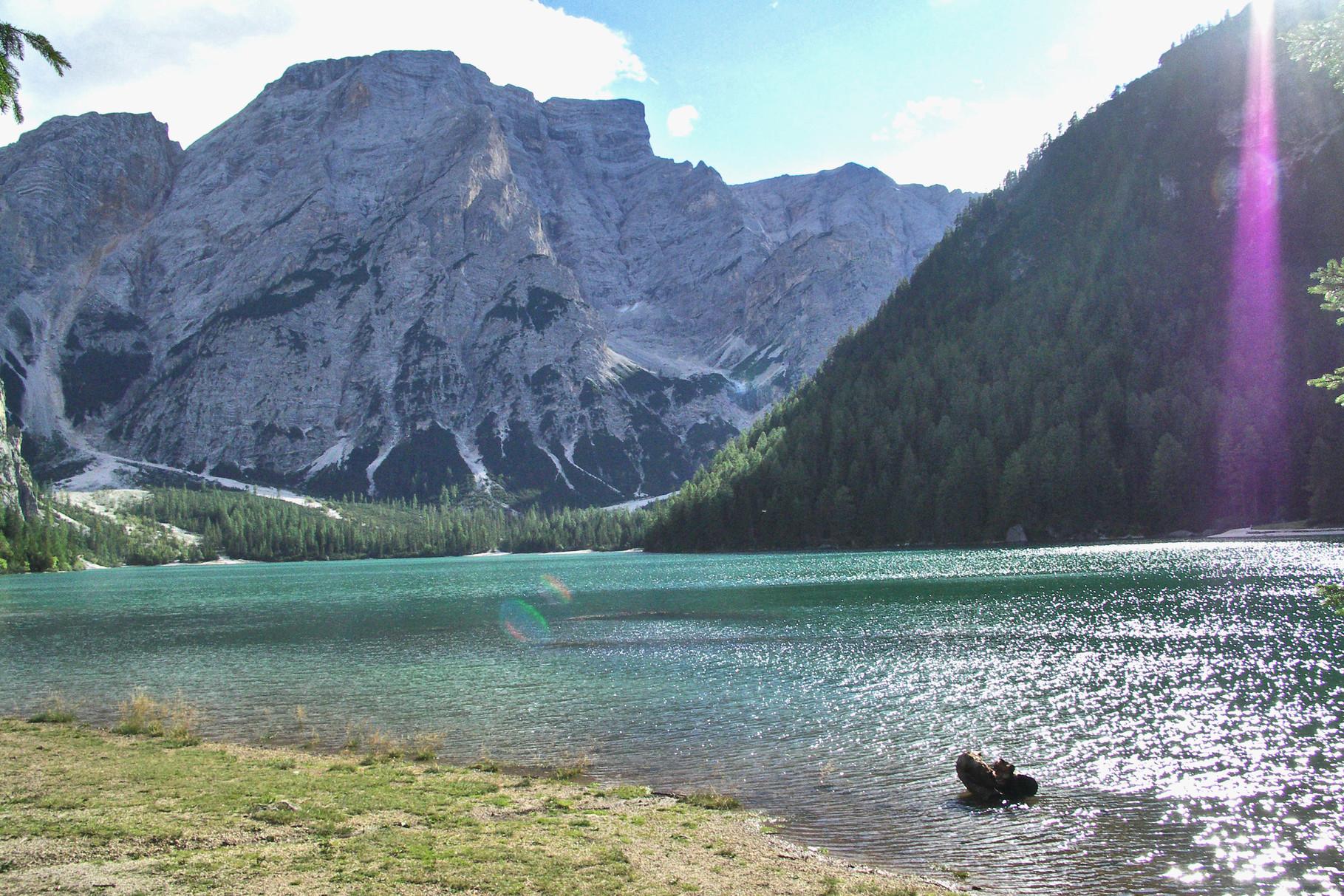 Praxer Wildsee
