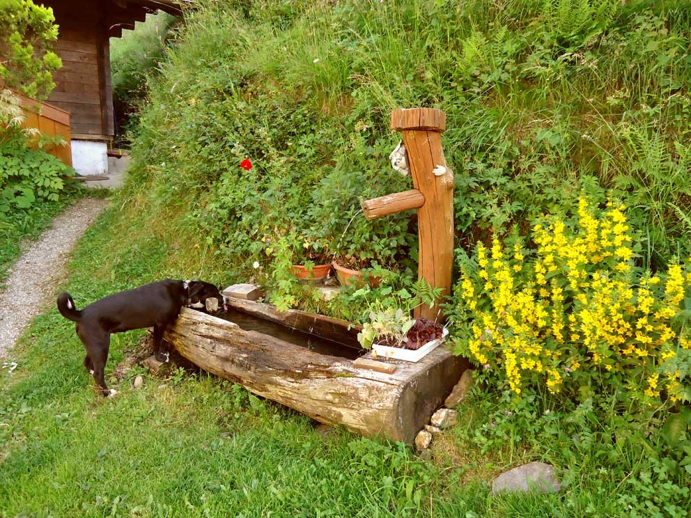 unser Brunnen