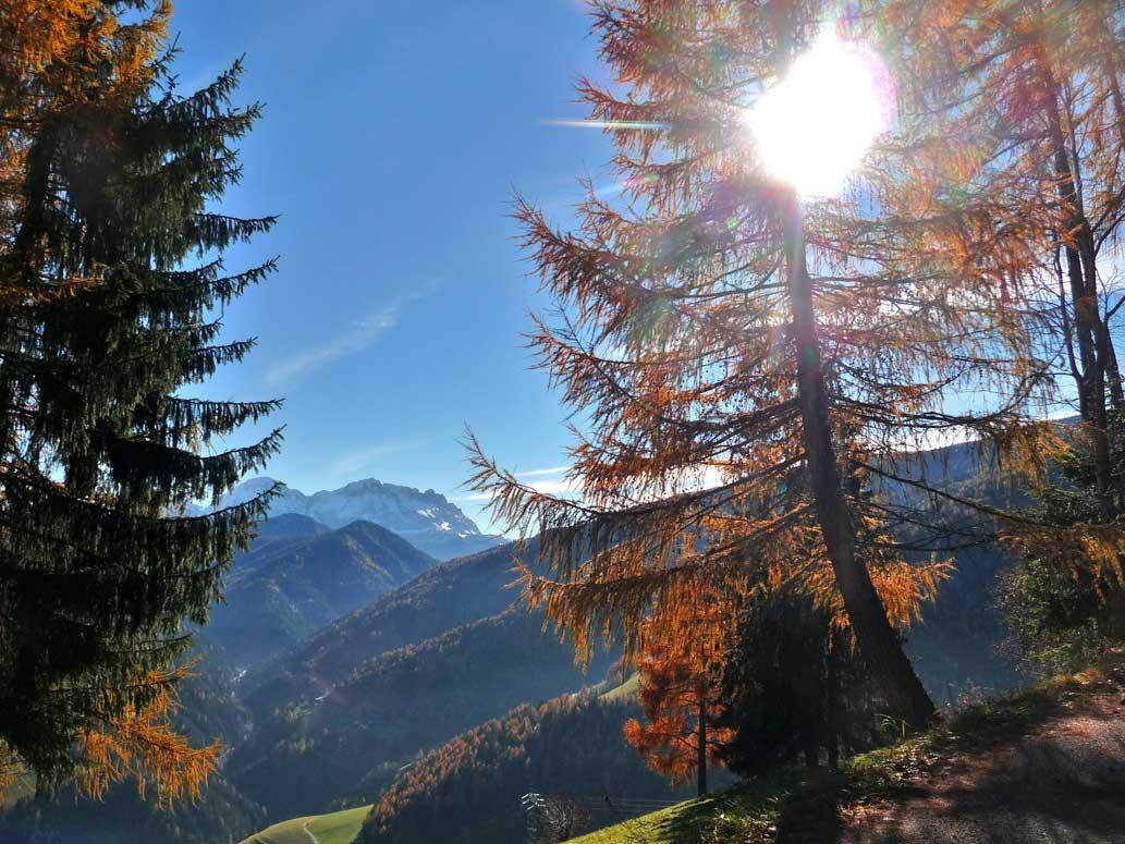 Herbst, herrlicher Sonenschein mit Kreuzkofelgruppe