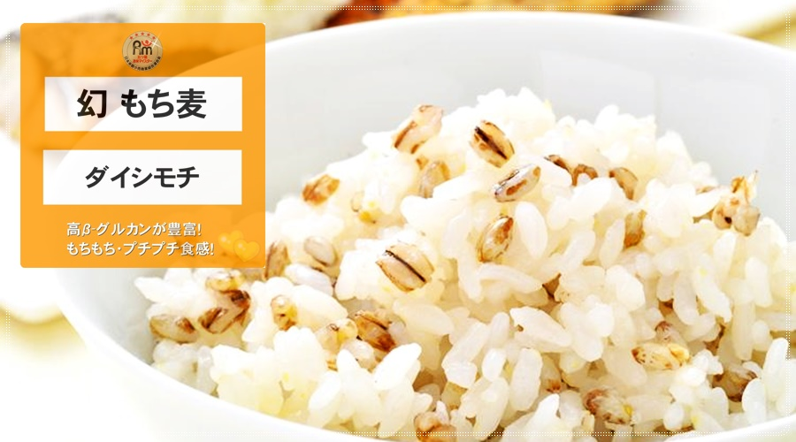 幻・媛もち麥|ダイシモチ(愛媛県東温市産/生産者:牧秀宣さんの幻もち麦)