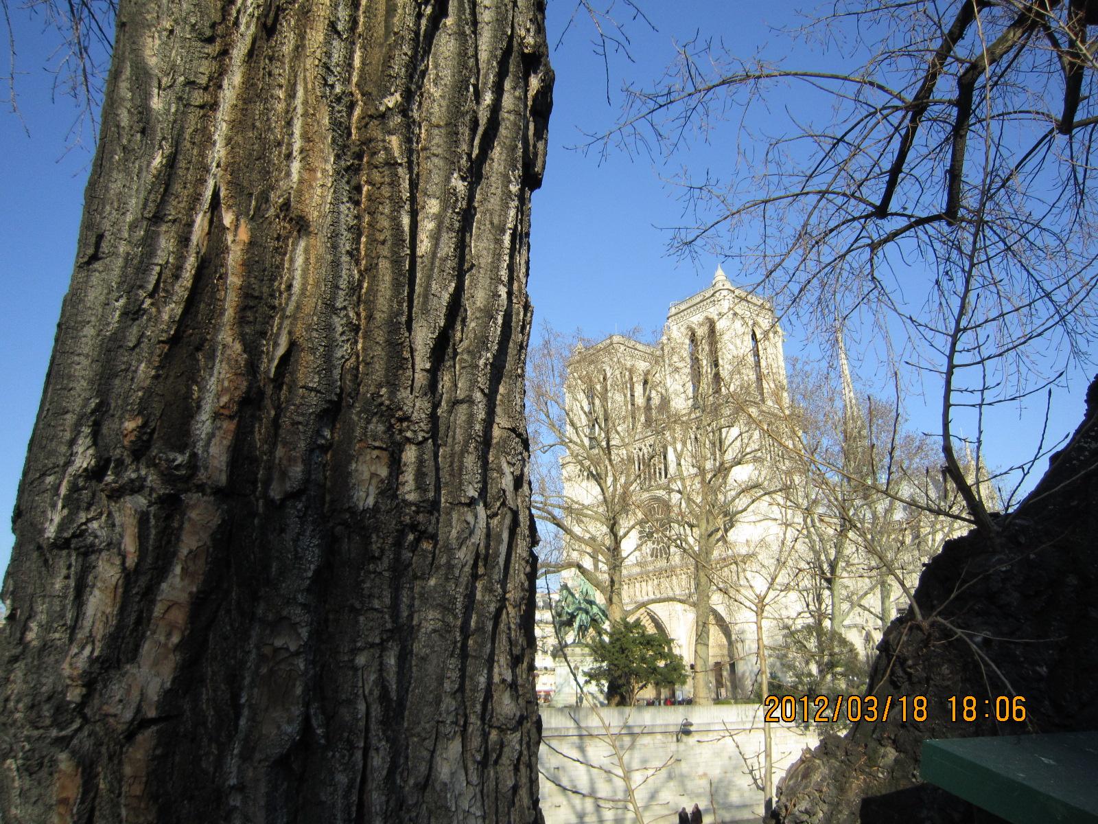 Pour les grincheux qui demandent sa démolition  un petit point d'histoire sur le sauvetage de Notre-Dame de Paris au XIXème siècle grâce à Victor Hugo