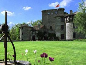 les tulipes au château-fort médéval de Tennessus