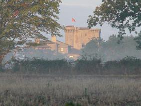 le château fort féeodal de Tennessus en automne