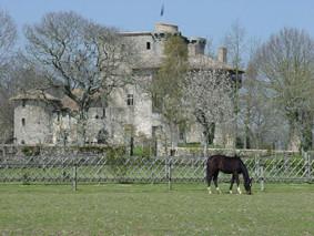 Printemps au château-fort médiéval deTennessus