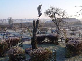 le potager médieval du château-fort de Tennessus en hiver
