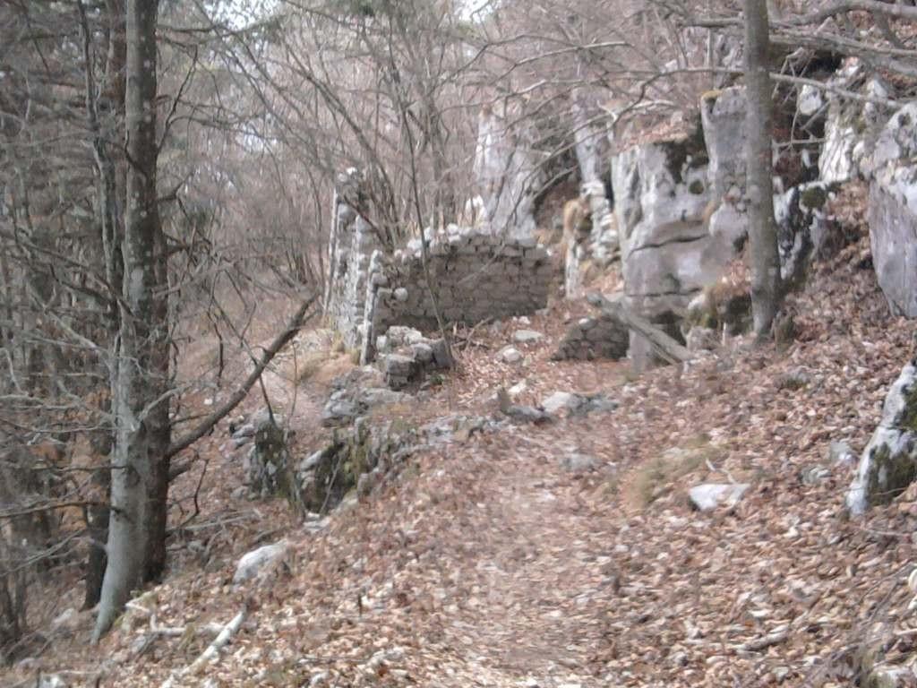 Valle S.Felicita -Cima Grappa