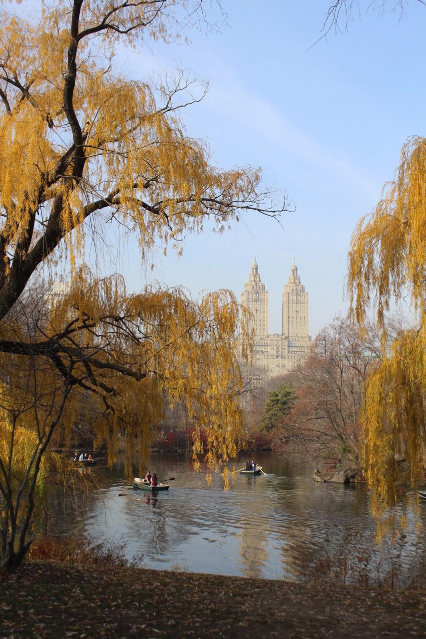 New York, Central Park - Deam On
