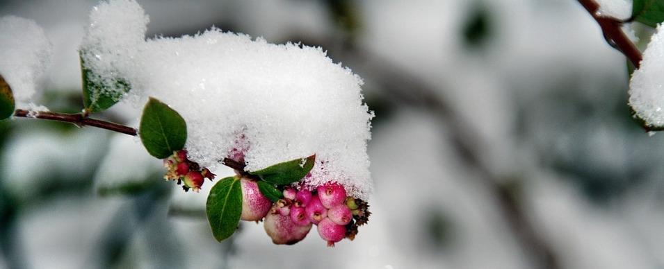 Inneres Chaos und emotionaler Winter
