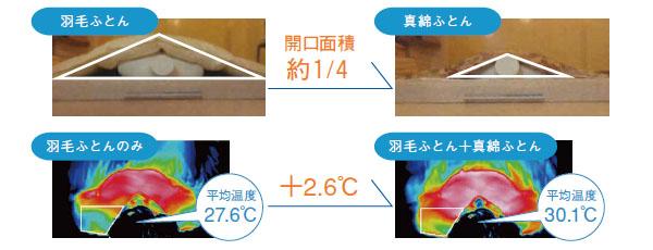 しなやかな記事の証明写真 肩口の開きと温度の差を示しています