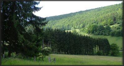 "bei ""Hellental"" in Richtung Naturpark  Solling-Vogler"