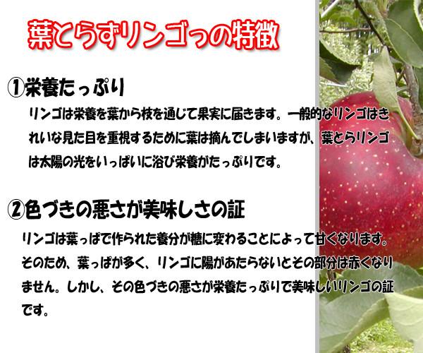 葉とらずりんご特徴説明バナー