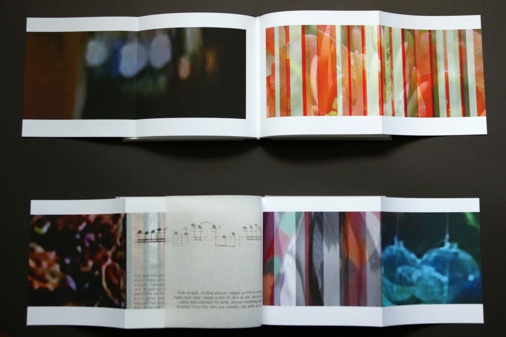 wer-gerne-eine-Reise-tut..._2012_oben:-2-seiten-aus-band1-unten:-2-seiten-mit-2-montierten-japanpapierseiten-aus-band2_pigmentdruck-auf-image-impact-japanpapier-und-hochtransparentpapier-17x18,2cm