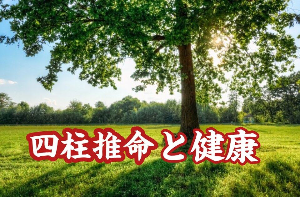 【四柱推命と健康】 木が多い人| 世田谷区の電話占い鑑定師 昭晴
