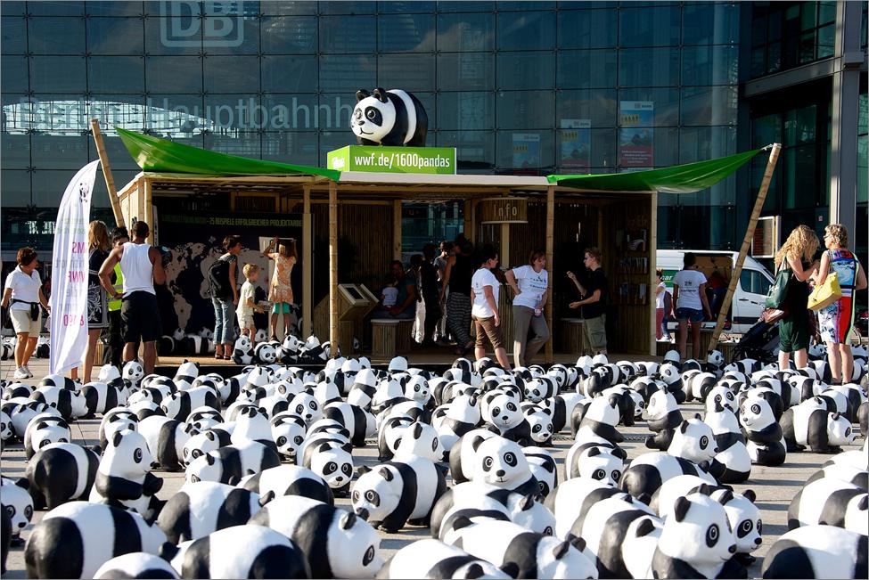 ROADSHOW - WWF, 1600 Pandas, bundesweit