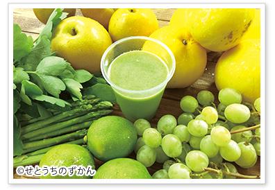 コールドプレスジュース 生搾りジュース fc 瀬戸内国際芸術祭 小豆島産 ©せとうちのずかん 果物