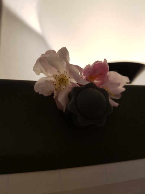 Flipchart mit Blüten
