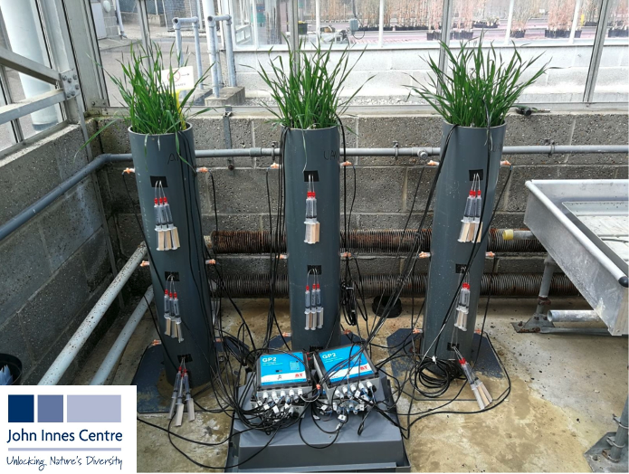 Nitrate Detection in Soil Columns