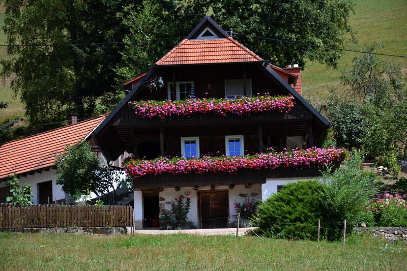 Mühlenbach (Bücherntal) im Schwarzwald
