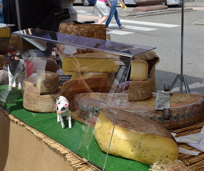 Käse in seinen verschiedenen Variationen
