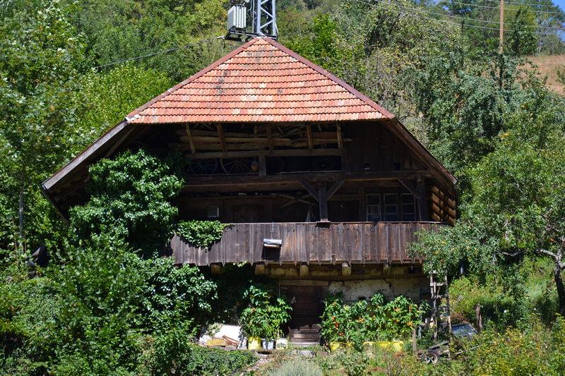Mühlenbach im Schwarzwald