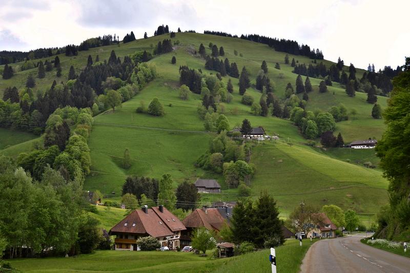 Münstertal / Schwarzwald