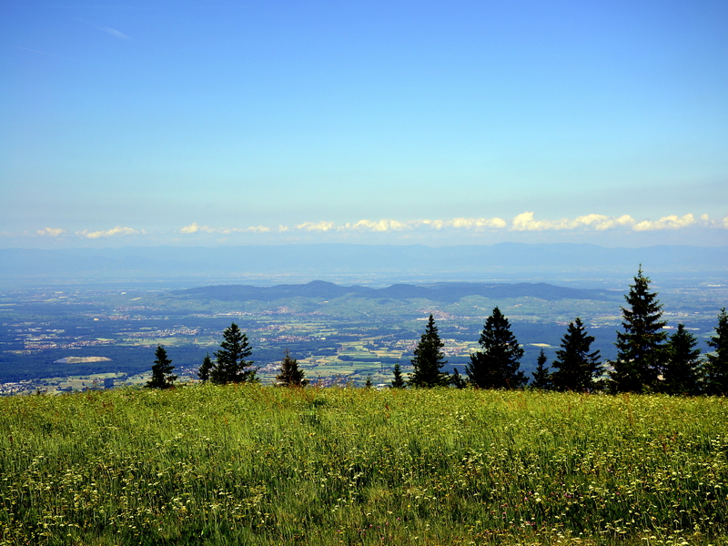 Kaiserstuhl vom Kandel