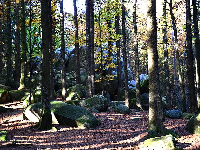 Günterfelsen,  zwischen Martinskapelle und Brend