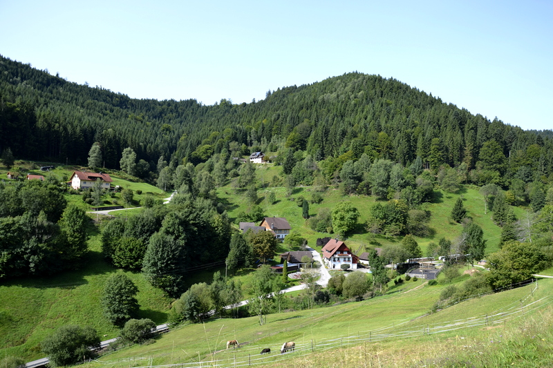Wittichen - Schenkzell