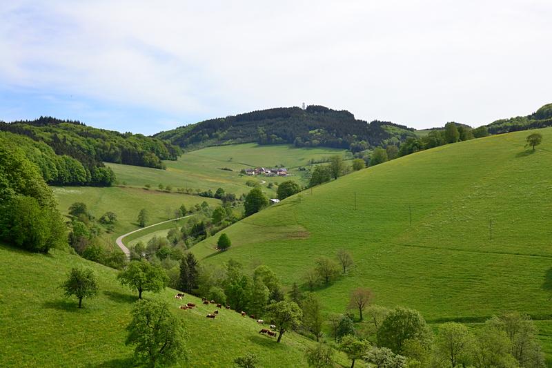 Brettenbach