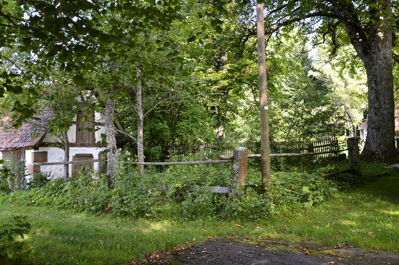 Leicht verwilderter  Garten Rötenberg -  Aichhalden