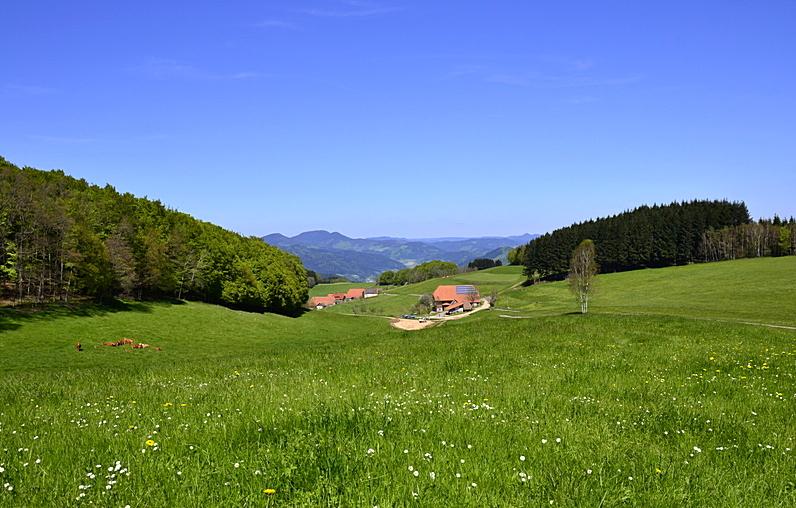 Breitebene - Hofstetten im Kinzigtal