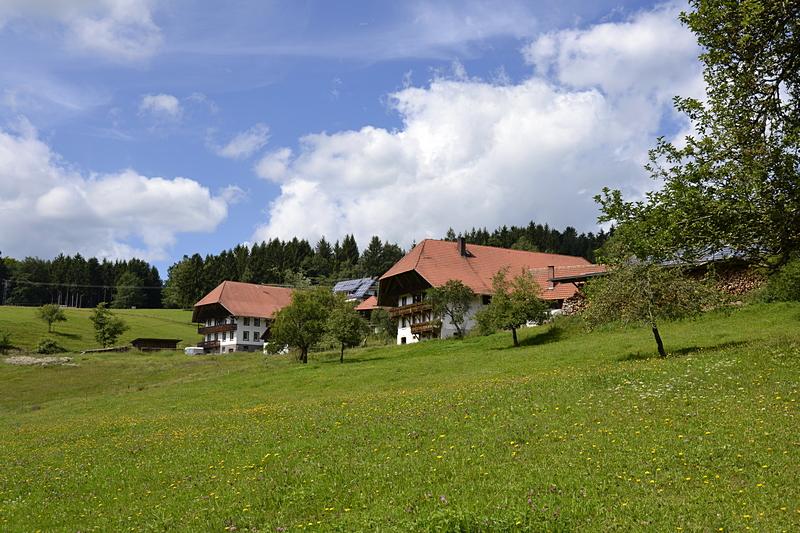 Bauernhof am Heidburgpass - Kinzigtal