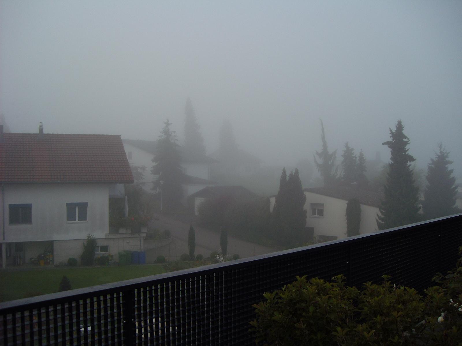 Okt-Nebel-2