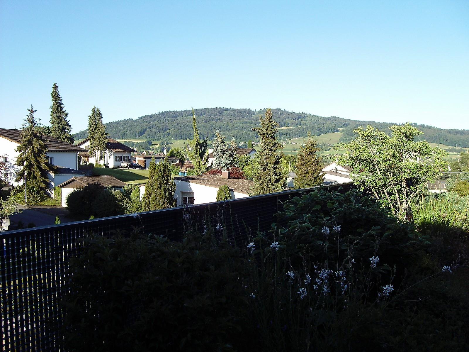 Sommer / Südwest-2