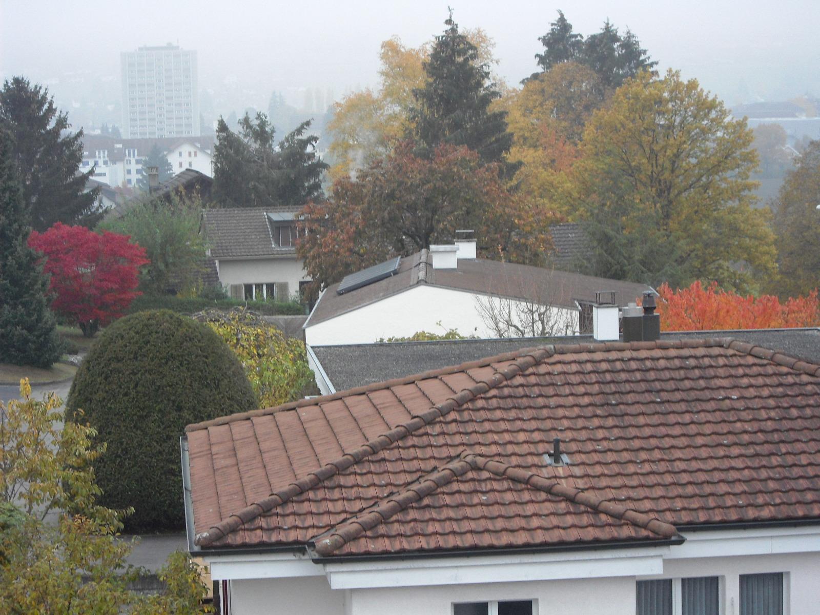 Herbst Ausblick-5