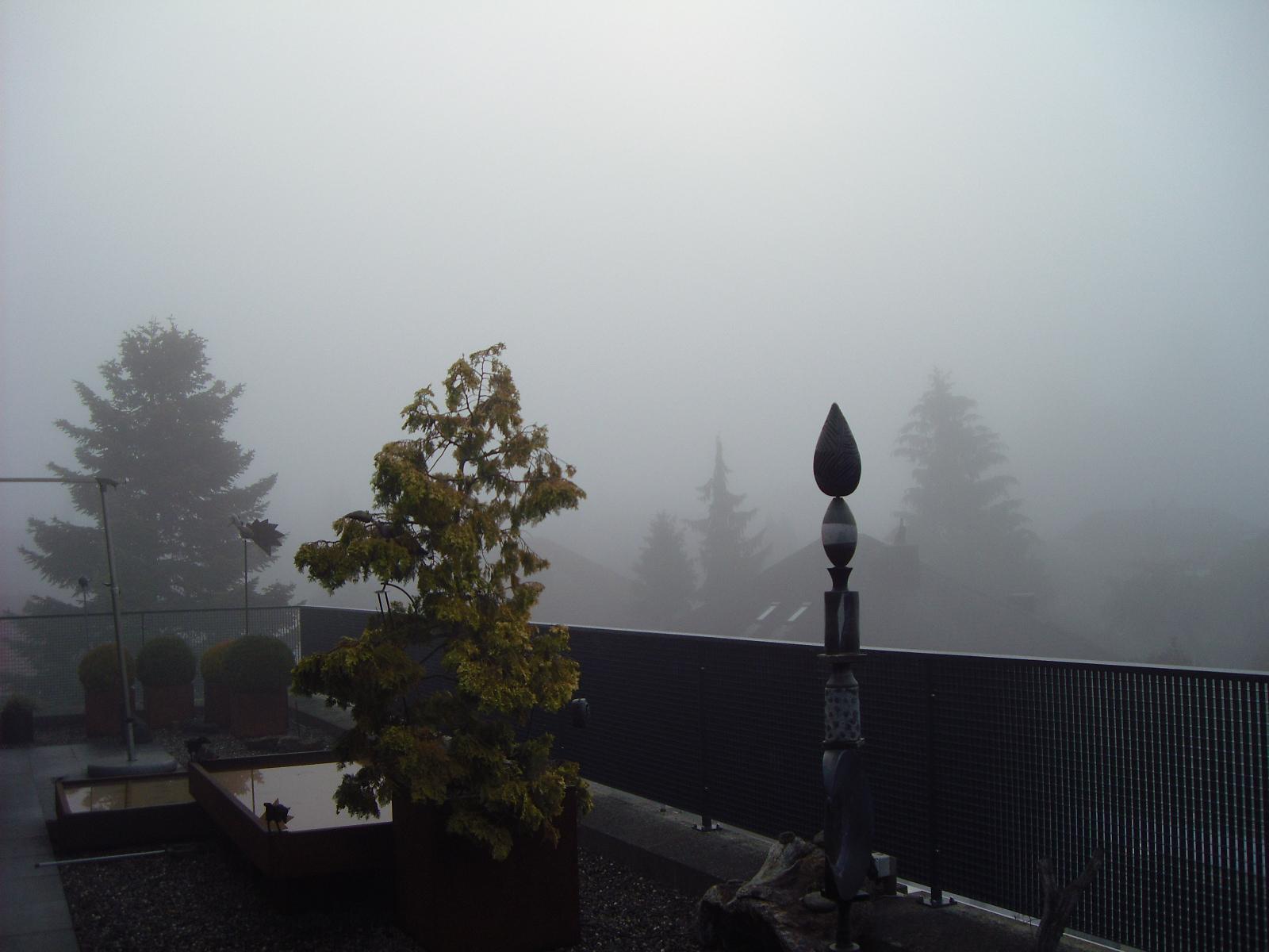 Okt-Nebel-1