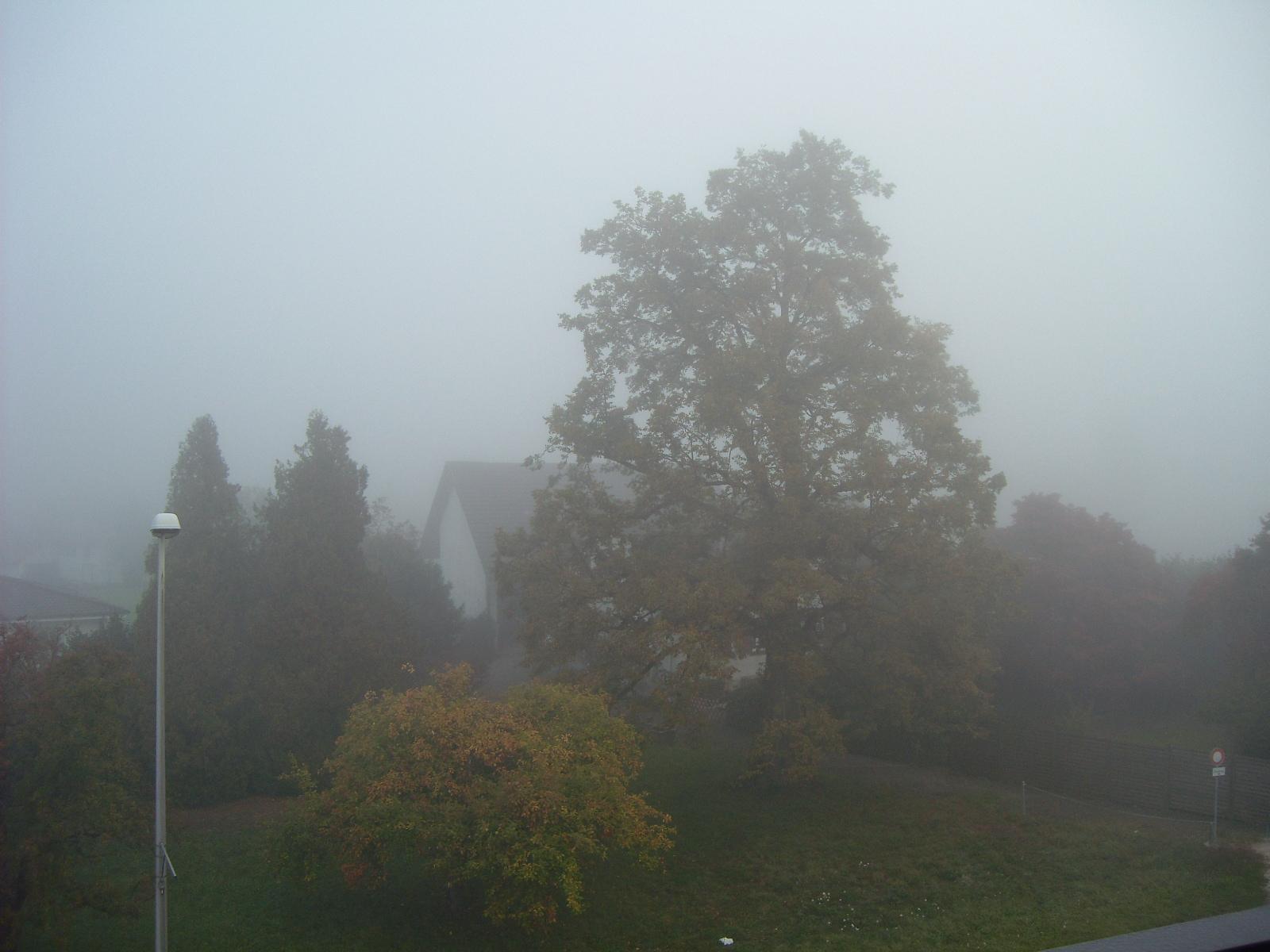 Okt-Nebel-4