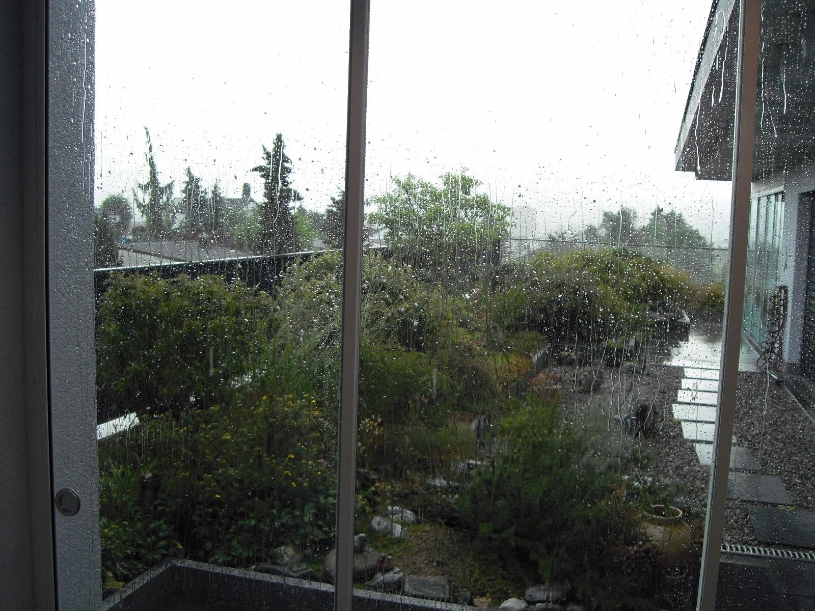 Juli / Willkommener Regen ... 1