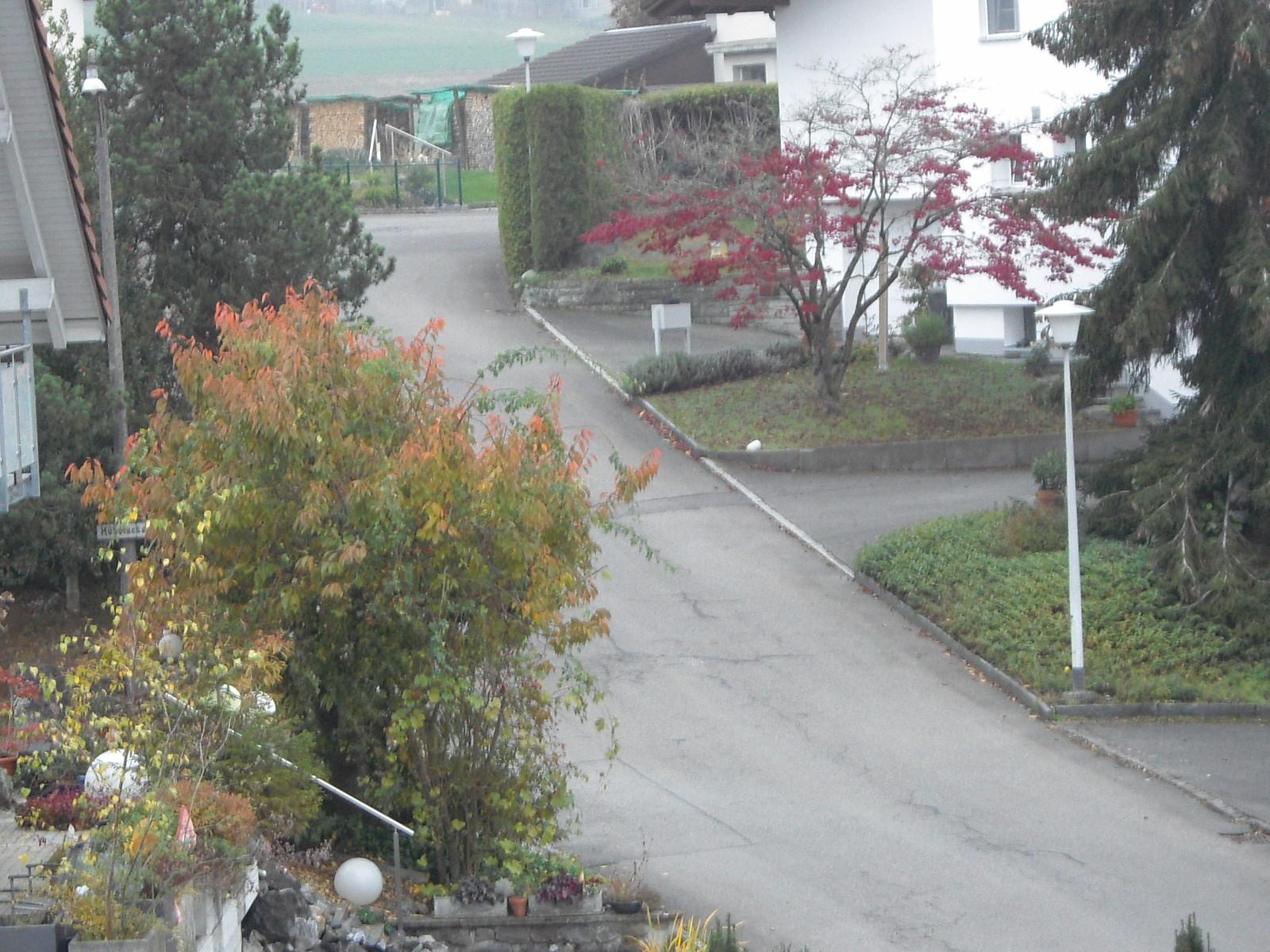 Herbst Ausblick-6