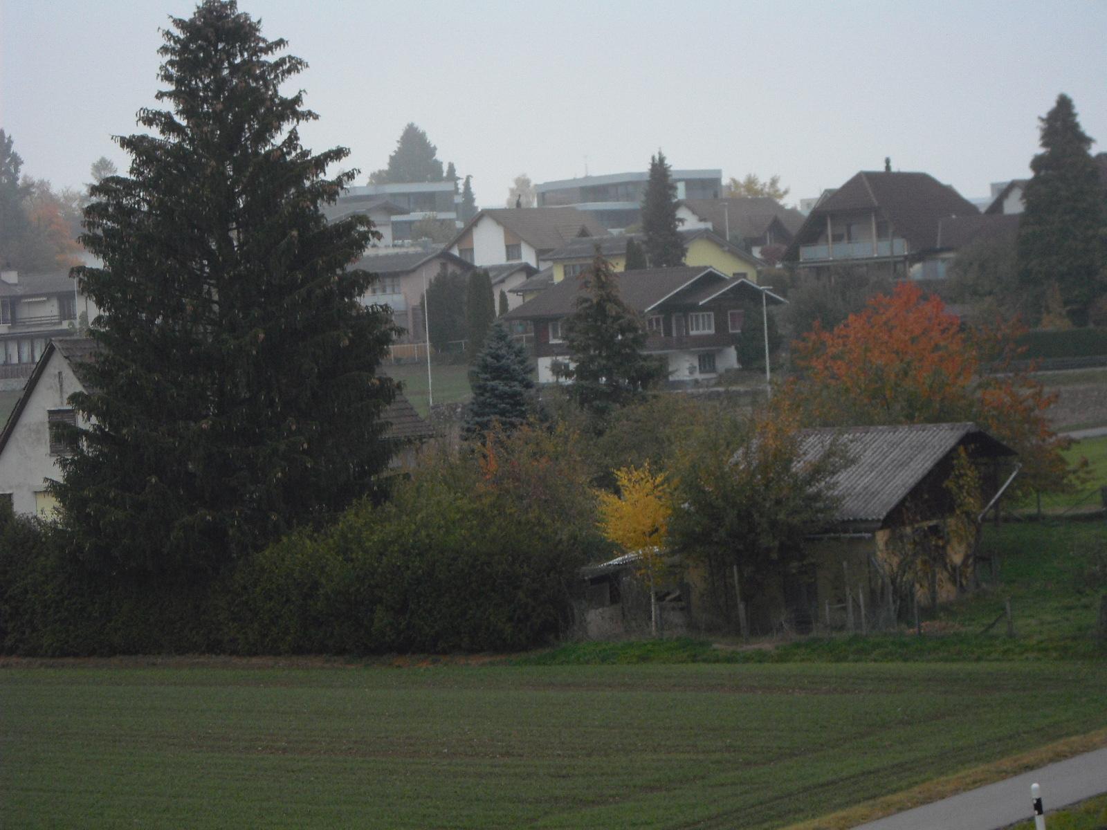 Herbst Ausblick-4