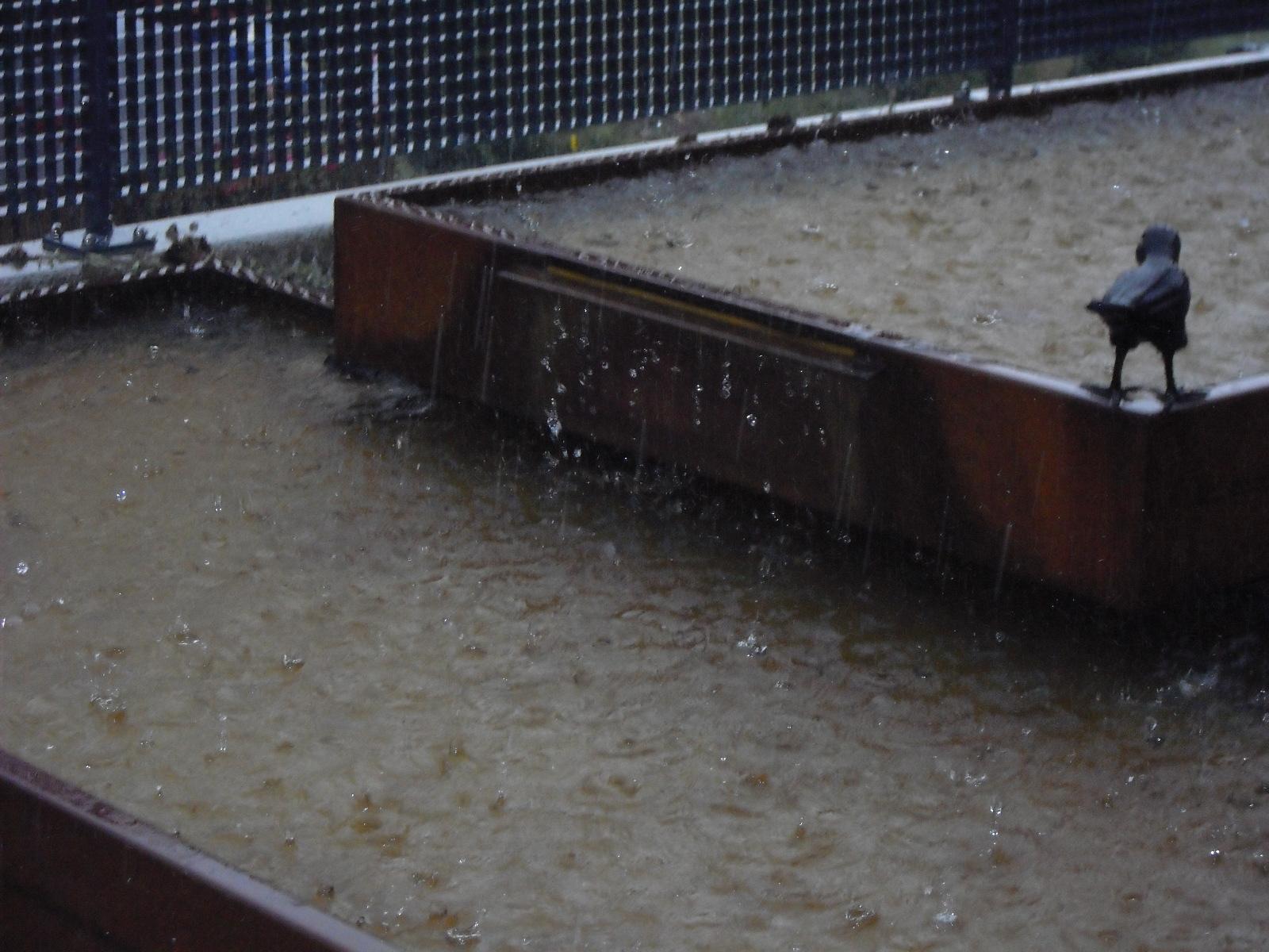 Juli / Willkommener Regen ... 6