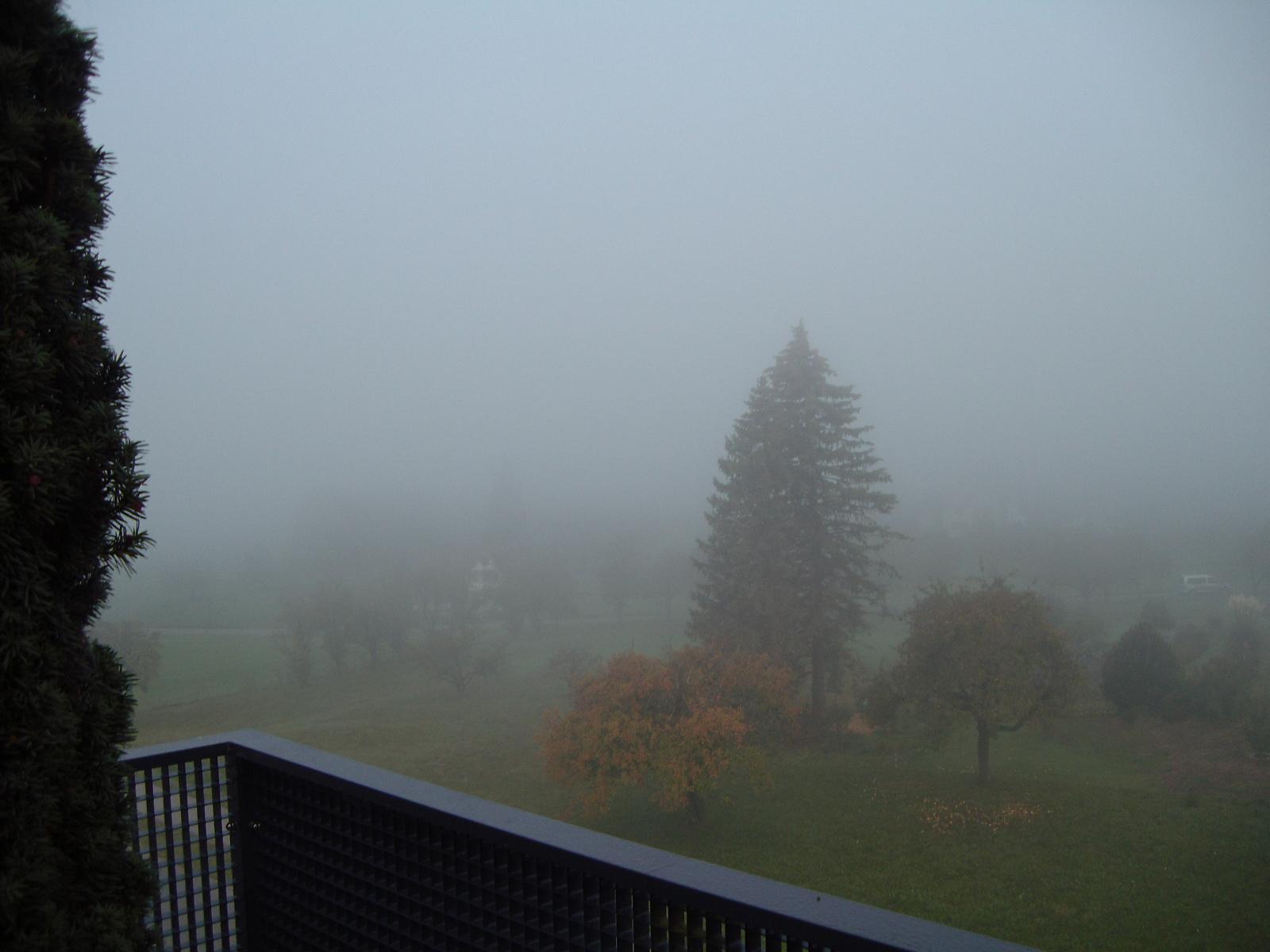 Okt-Nebel-5