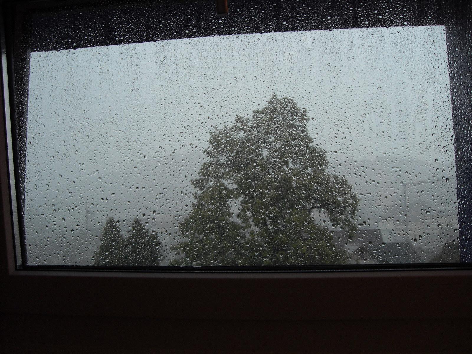 Juli / Willkommener Regen ... 3