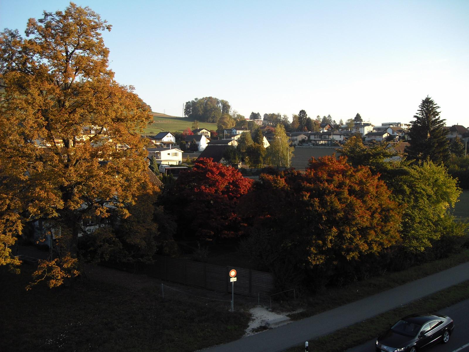 Herbst Ausblick-2