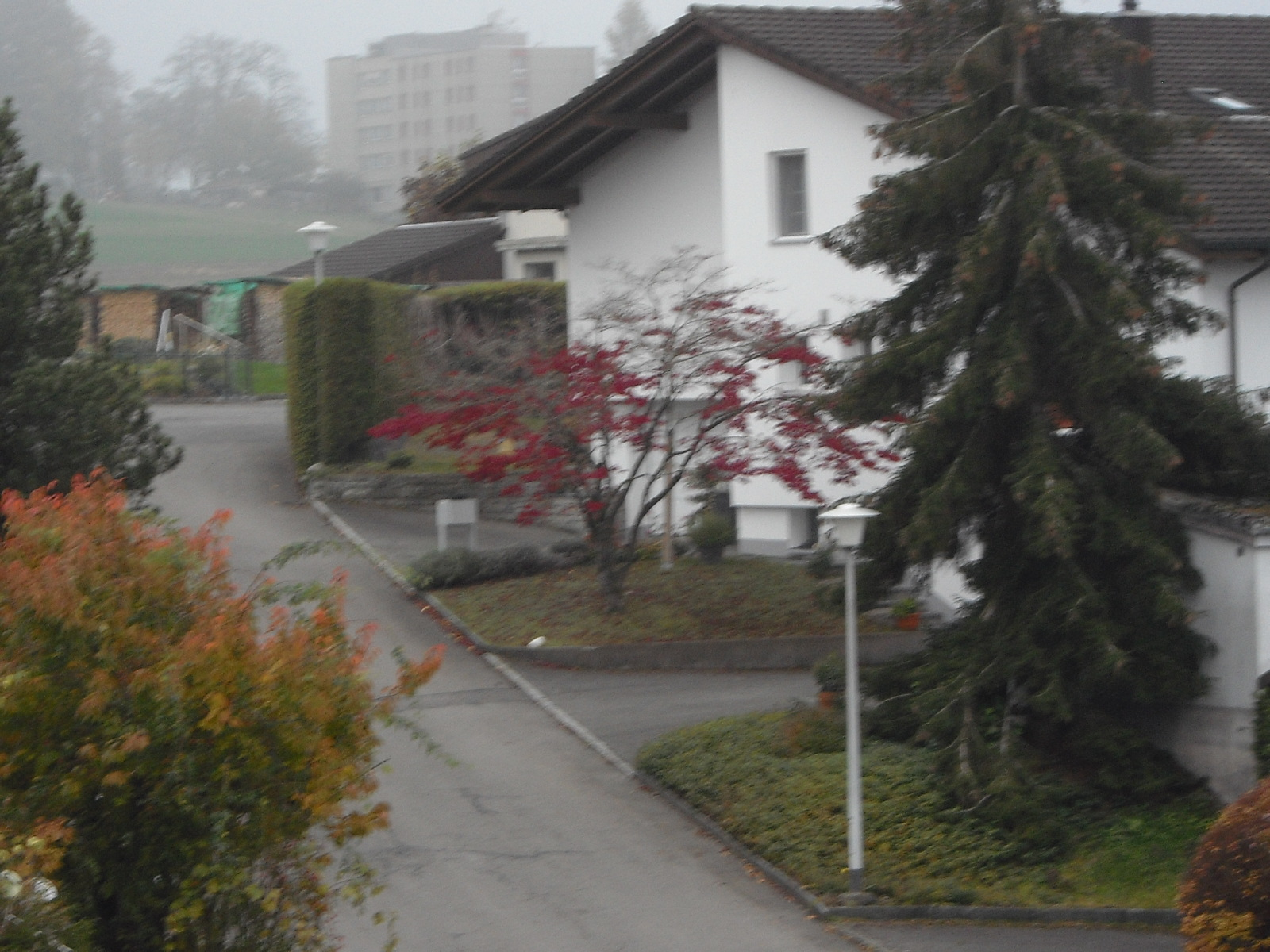 Herbst Ausblick-7