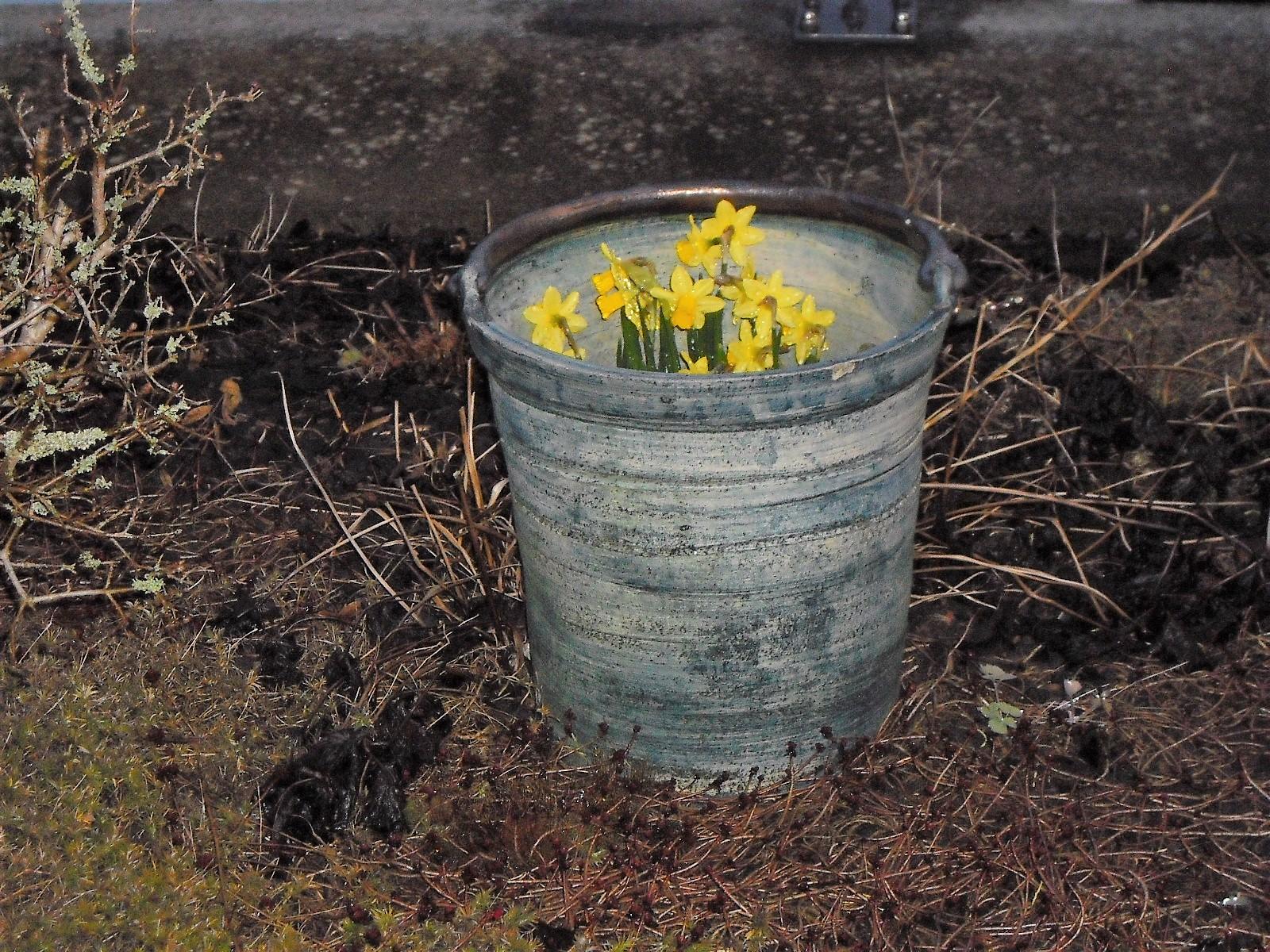 April-April ! / 1 / Dachgarten Süd-West