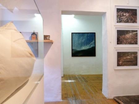"""Werkstadt Graz, Ausstellungsansicht """"Landschaft"""""""