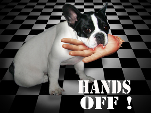 Hands off -  Fotomontage