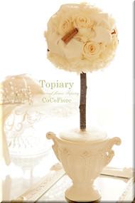 Topialy(W12×D9×H32)¥8,000
